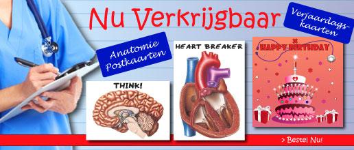 Banner Postcards NL